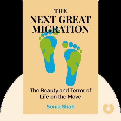 The Next Great Migration von Sonia Shah