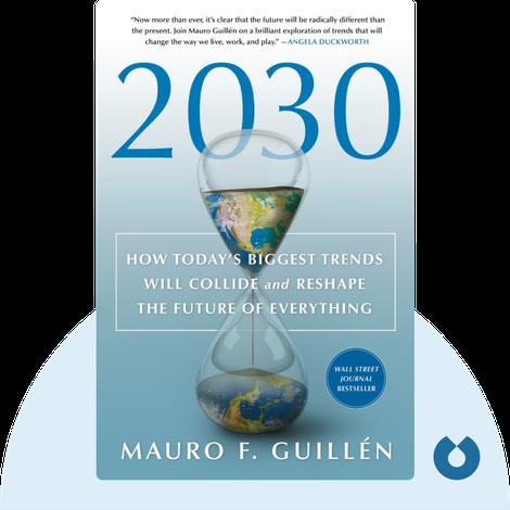 2030 von Mauro F. Guillén