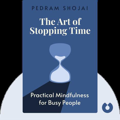 The Art of Stopping Time von Pedram Shojai