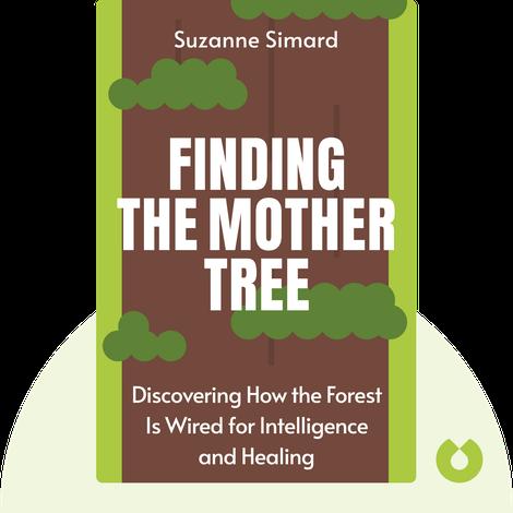 Finding the Mother Tree von Suzanne Simard