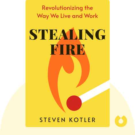 Stealing Fire von Steven Kotler and Jamie Wheal