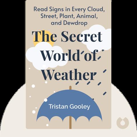 The Secret World of Weather von Tristan Gooley